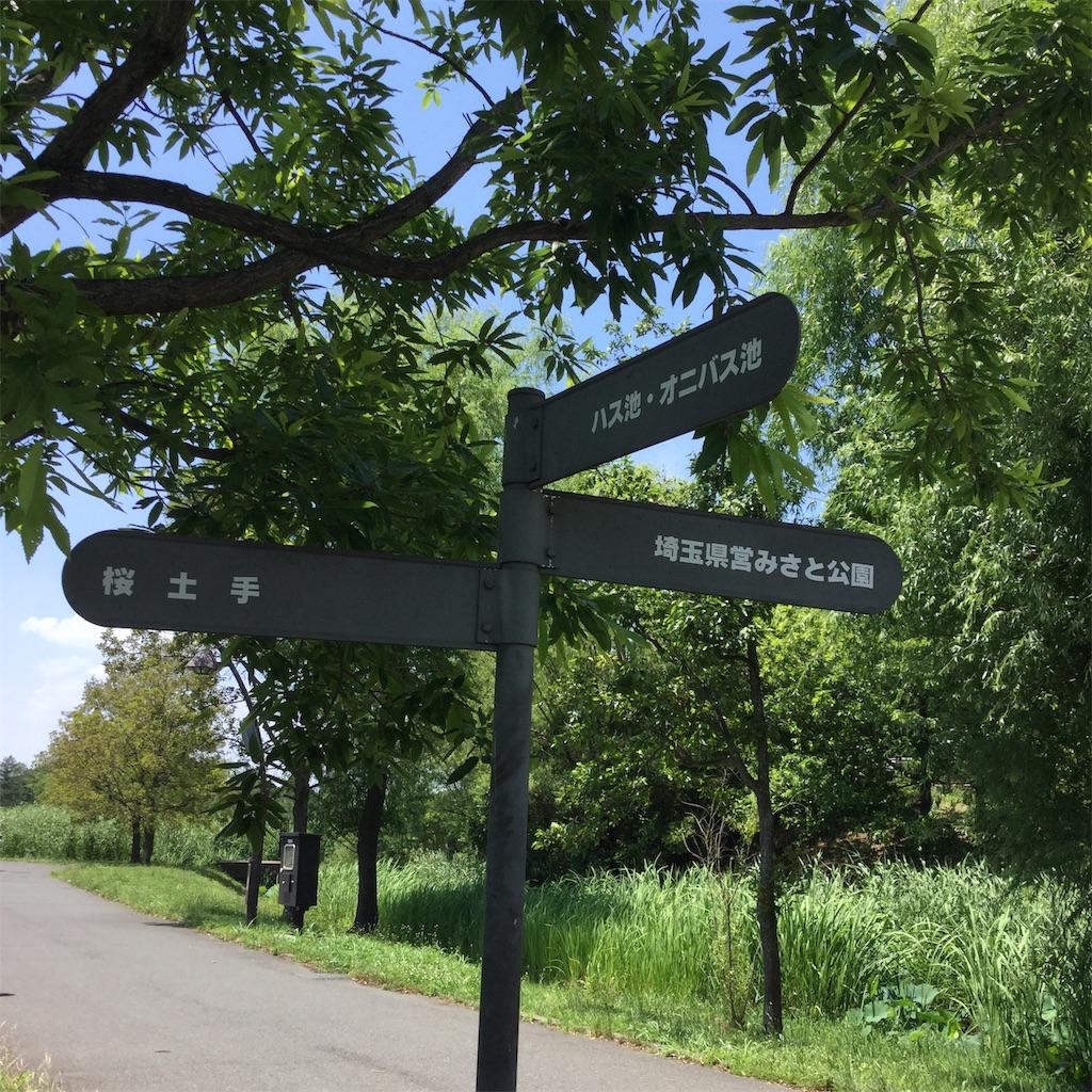 f:id:showtaro-aoki:20200703112710j:plain
