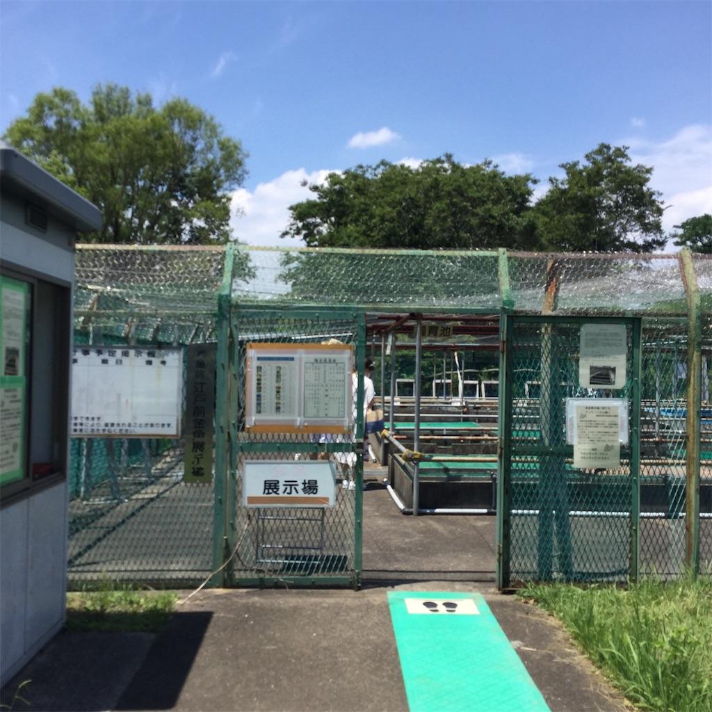 f:id:showtaro-aoki:20200703112730j:plain