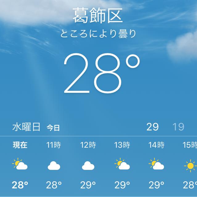 f:id:showtaro-aoki:20200703132713p:plain