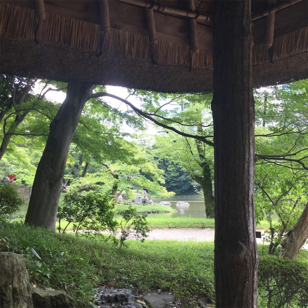 f:id:showtaro-aoki:20200708161815j:plain