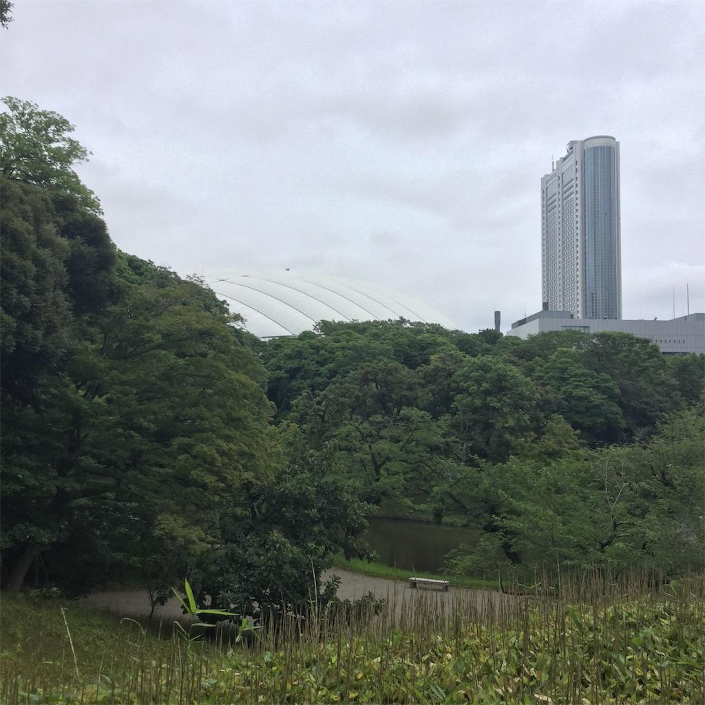 f:id:showtaro-aoki:20200708161839j:plain