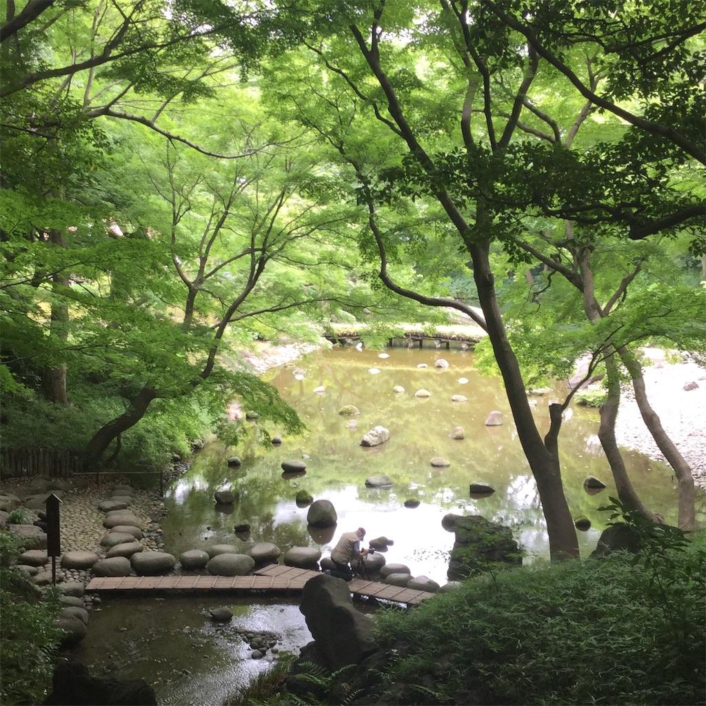 f:id:showtaro-aoki:20200708161854j:plain