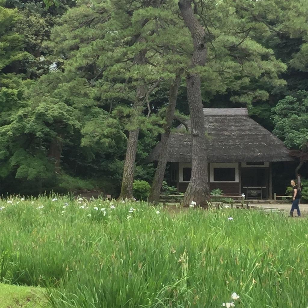 f:id:showtaro-aoki:20200708161913j:plain