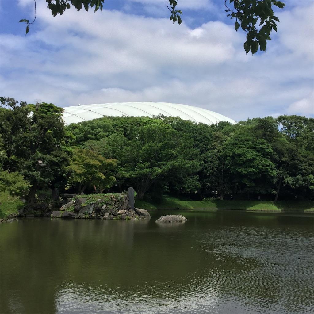 f:id:showtaro-aoki:20200708161924j:plain