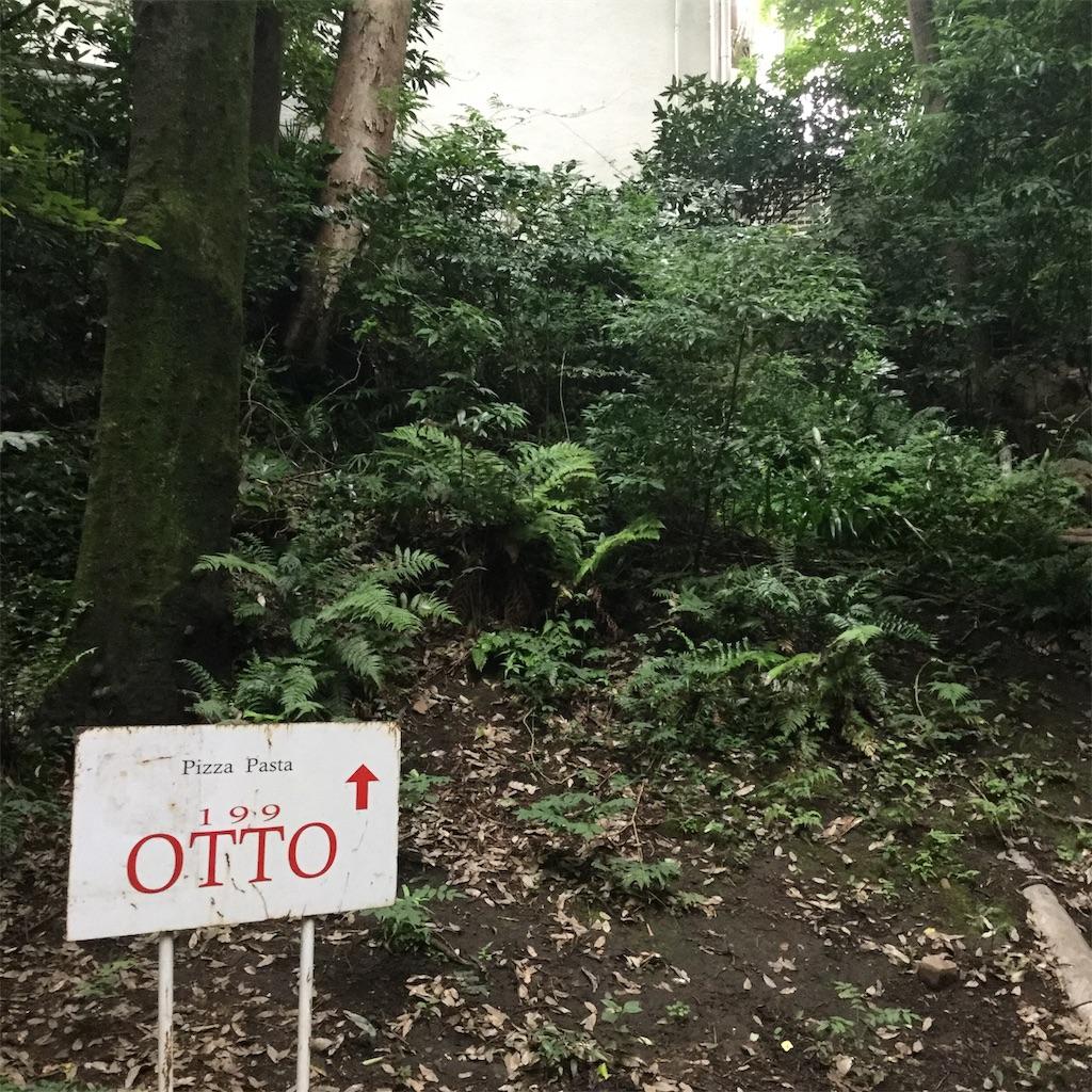 f:id:showtaro-aoki:20200724133516j:plain