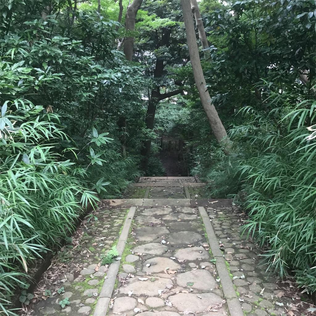 f:id:showtaro-aoki:20200803165647j:plain