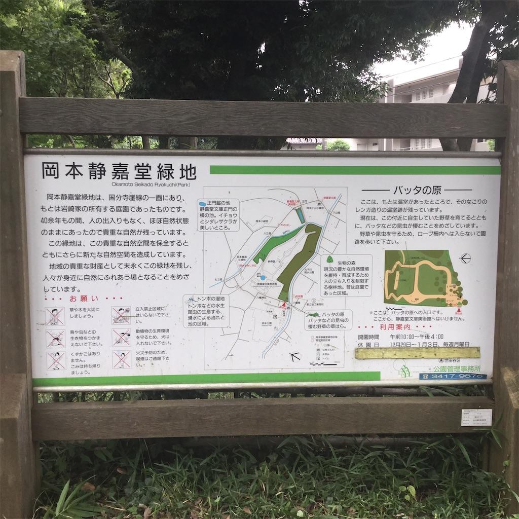 f:id:showtaro-aoki:20200803165655j:plain