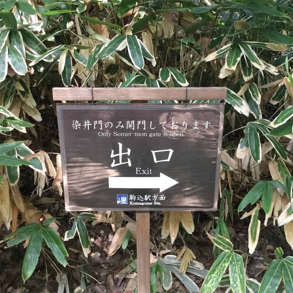 f:id:showtaro-aoki:20200914230041j:plain