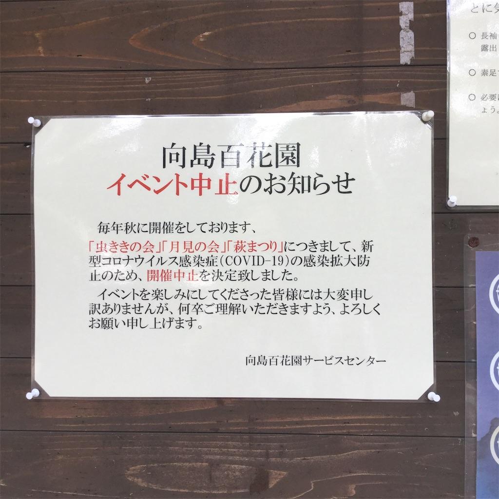 f:id:showtaro-aoki:20200922193952j:plain