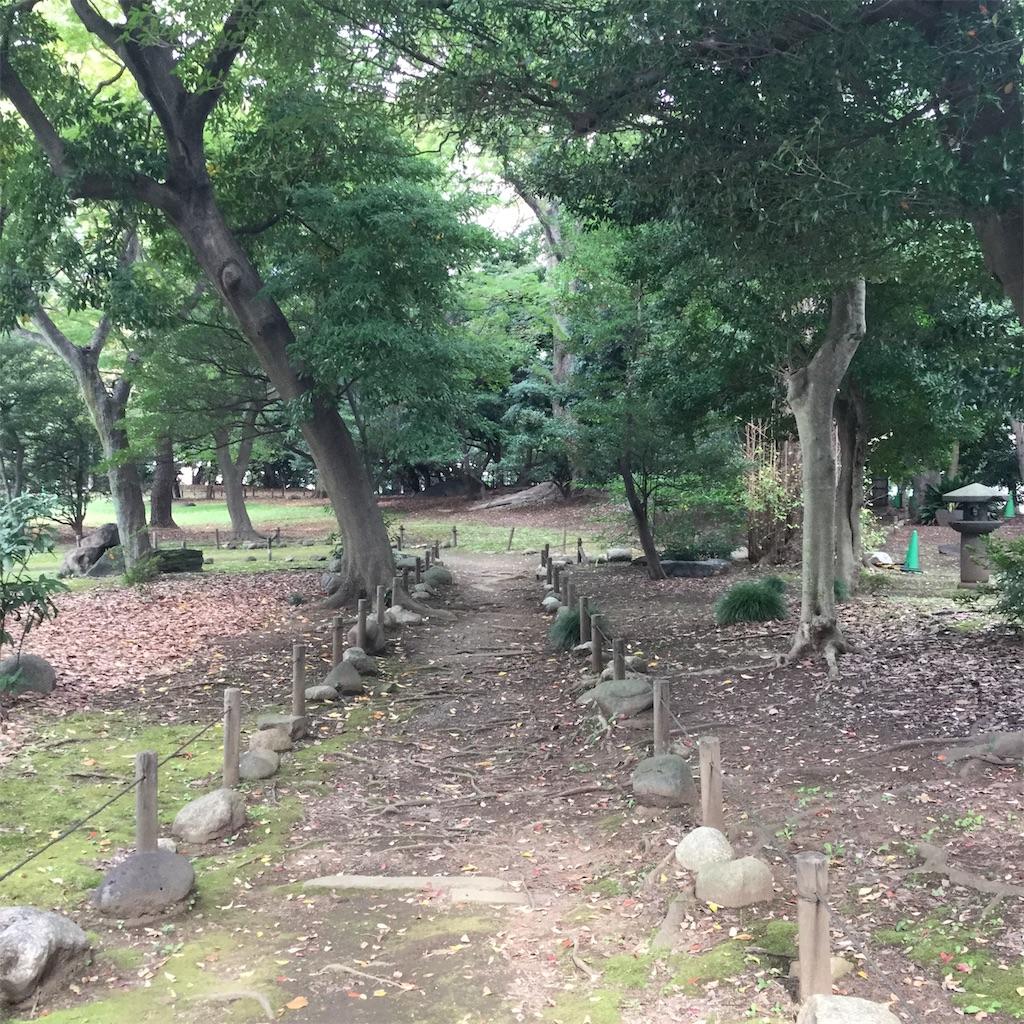 f:id:showtaro-aoki:20201107164013j:plain