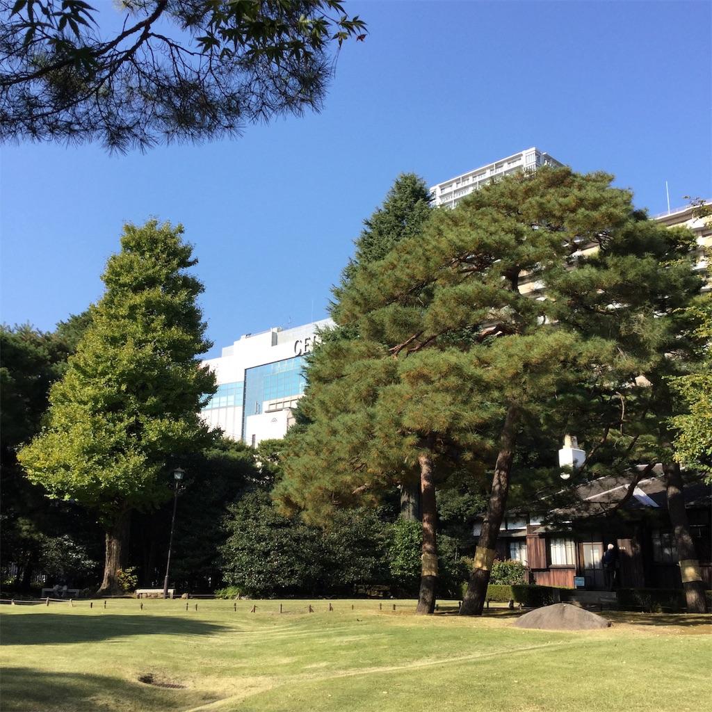 f:id:showtaro-aoki:20201124172935j:plain