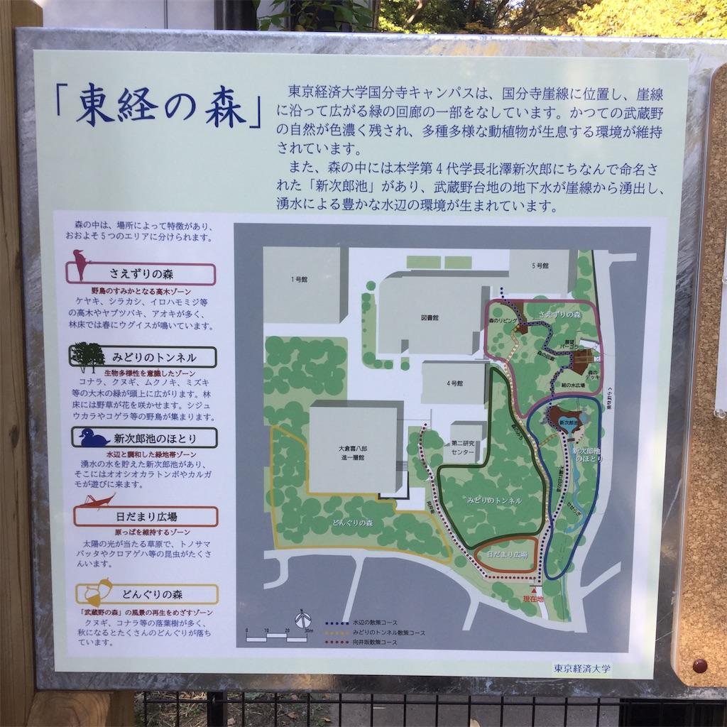 f:id:showtaro-aoki:20201124173034j:plain
