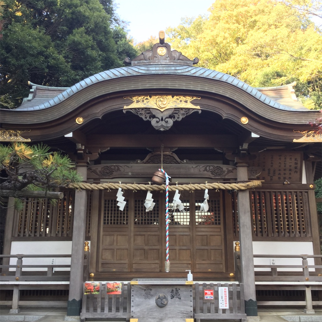 f:id:showtaro-aoki:20201124173115j:plain