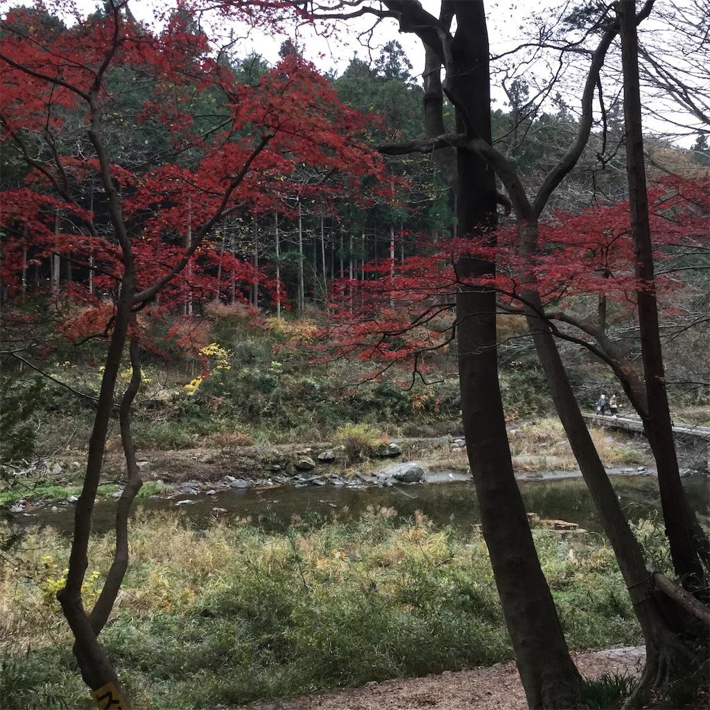 f:id:showtaro-aoki:20201210215915j:plain