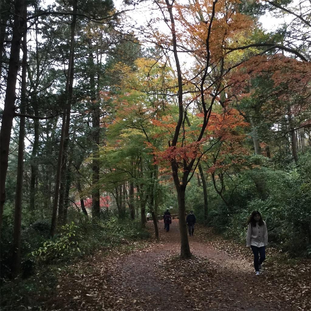 f:id:showtaro-aoki:20201210215924j:plain
