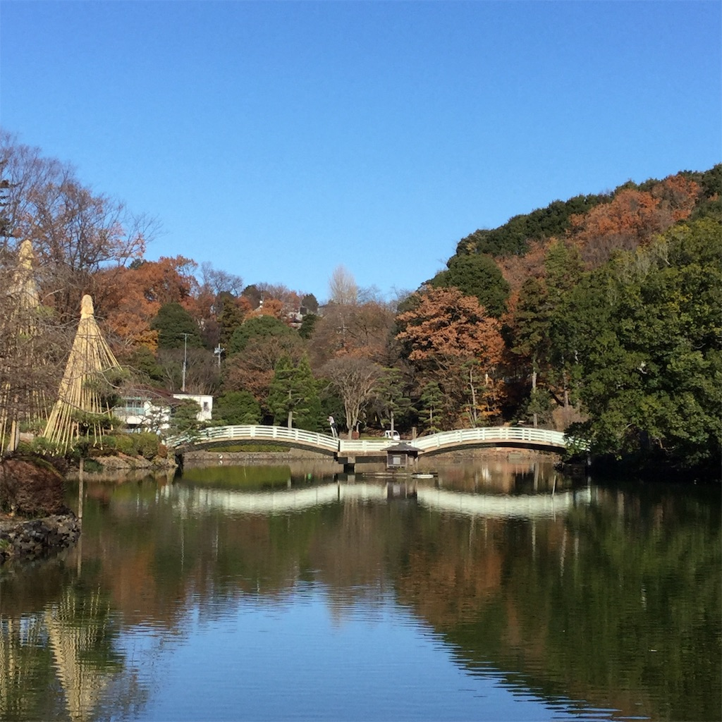 f:id:showtaro-aoki:20201230164840j:plain