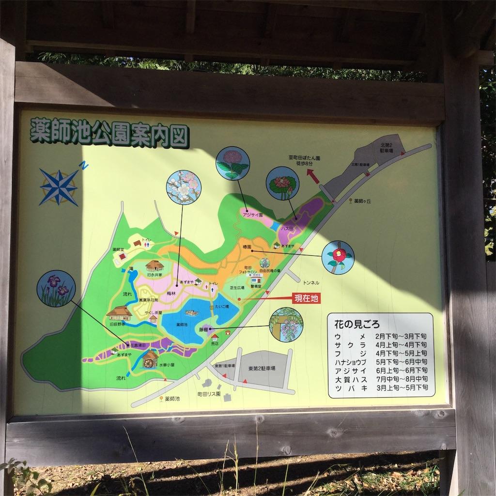 f:id:showtaro-aoki:20201230164936j:plain