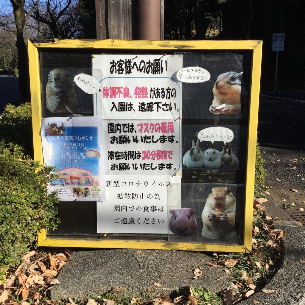 f:id:showtaro-aoki:20201230164947j:plain