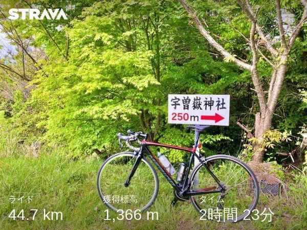 f:id:shoya-kenkouotaku2:20210429125651j:plain