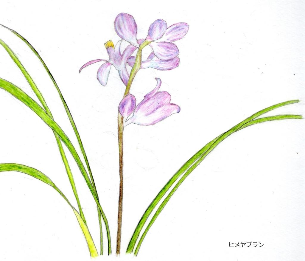 f:id:shuasai1207:20171211111526j:plain