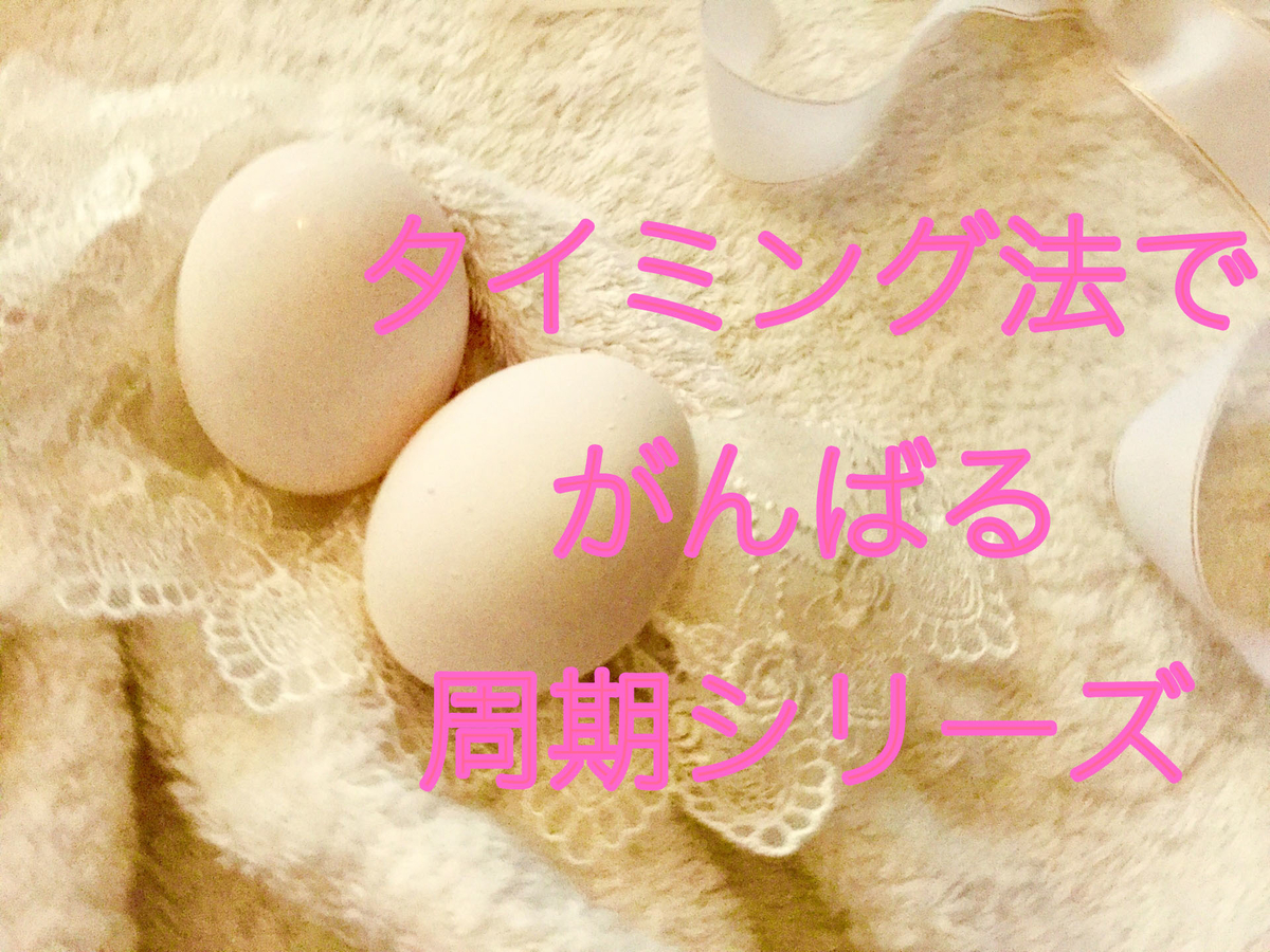 f:id:shufukatsu:20190510012533j:plain