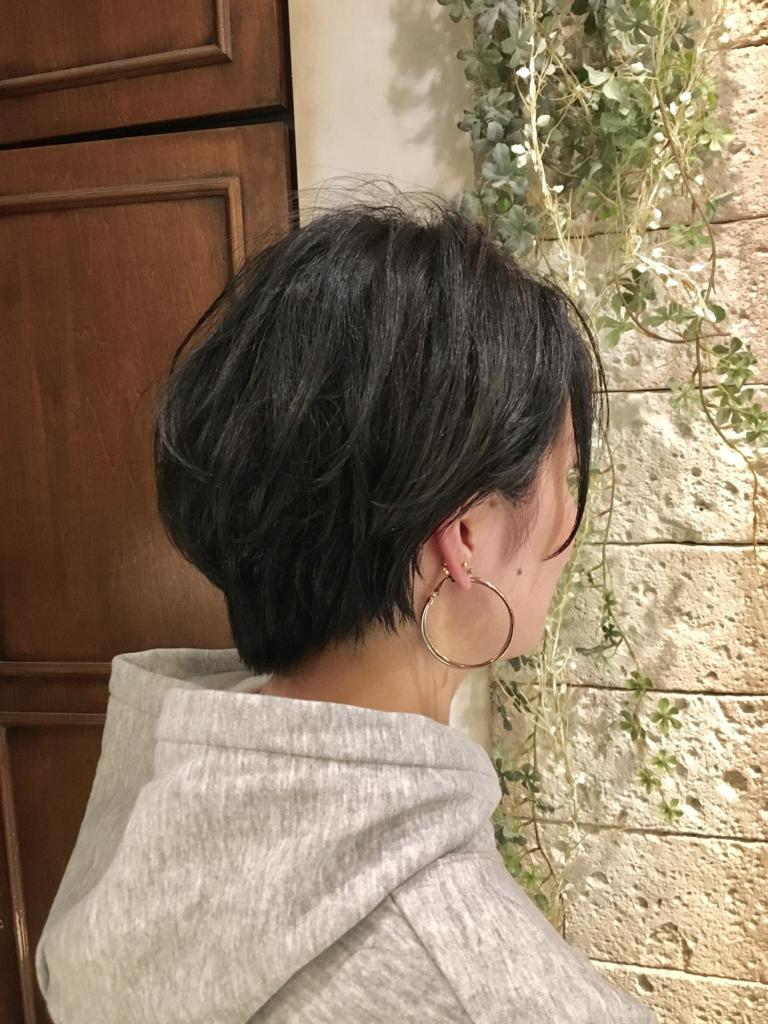f:id:shuji073:20170319000424j:plain