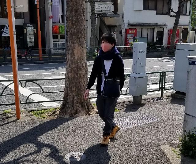 f:id:shuka-tsu2:20190317142750j:image
