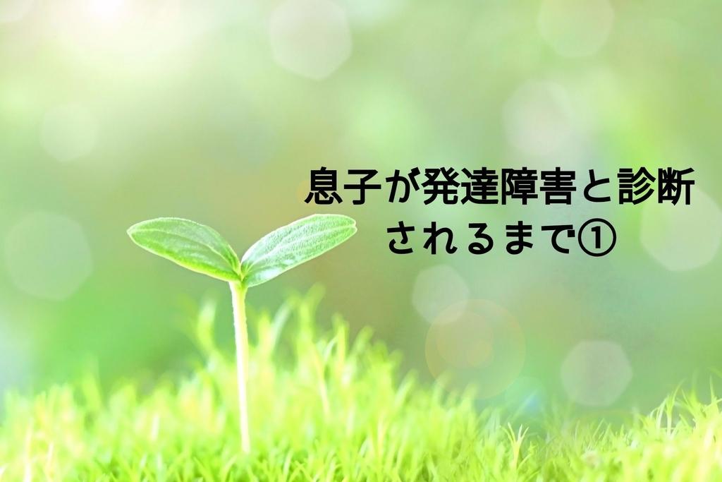 f:id:shuka_051615:20181211174634j:plain