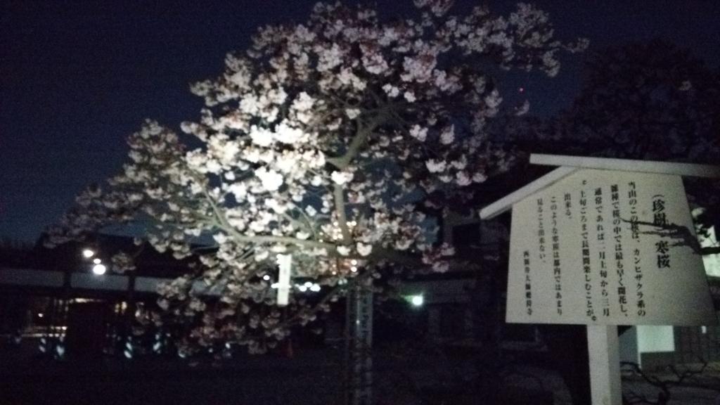f:id:shukuzou:20170202112232j:plain