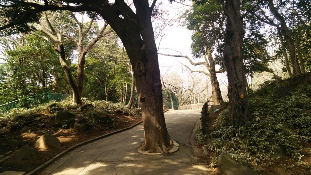 f:id:shukuzou:20170306111443j:plain