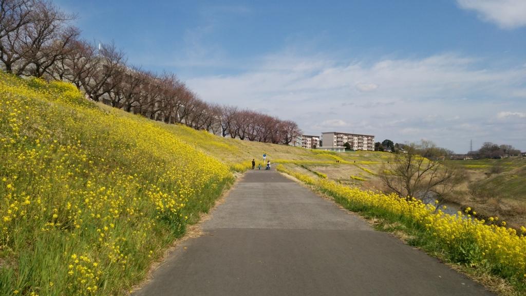 f:id:shukuzou:20170404191029j:plain
