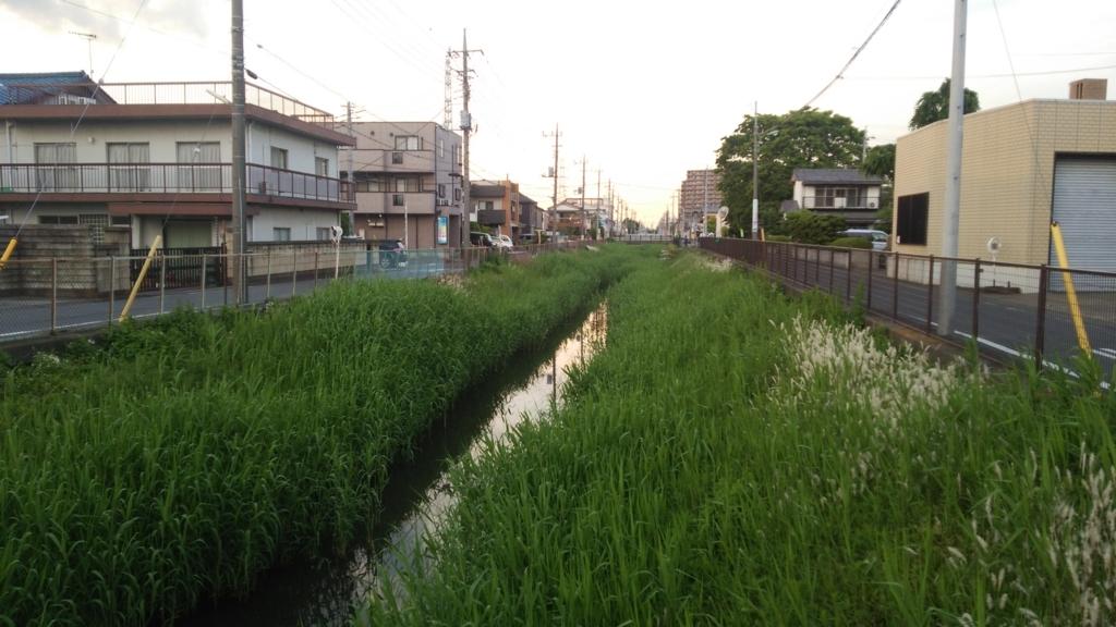 f:id:shukuzou:20170512114317j:plain