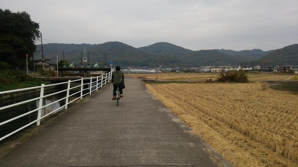 f:id:shukuzou:20181115124324j:plain