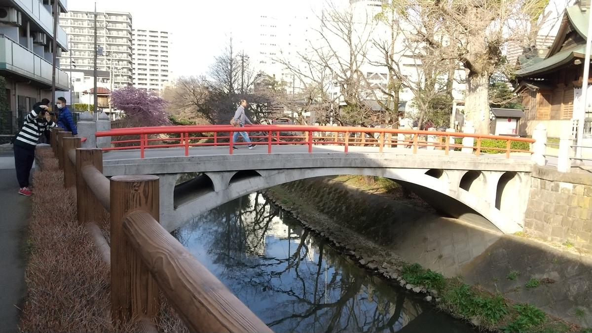 f:id:shukuzou:20200301153241j:plain