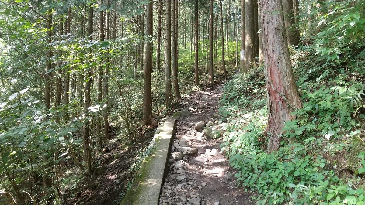 f:id:shukuzou:20200810131350j:plain