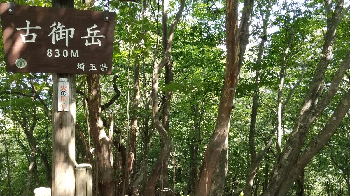 f:id:shukuzou:20200831143846j:plain