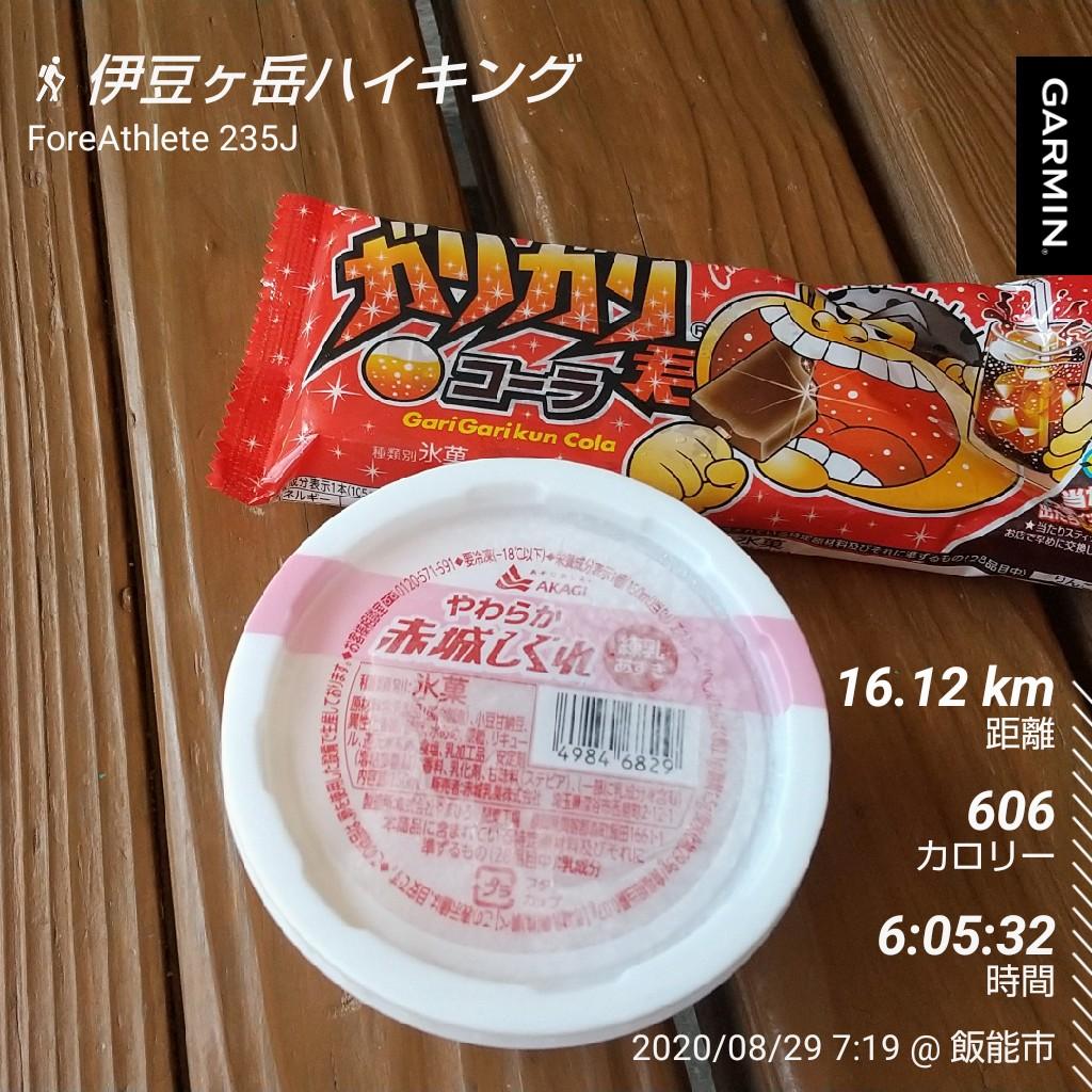 f:id:shukuzou:20200831144500j:plain