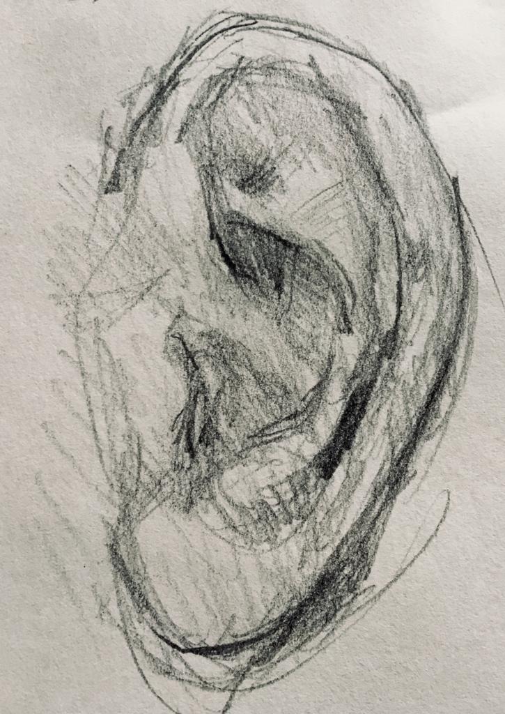 耳の鉛筆画