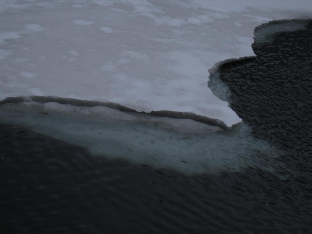 沼の氷の写真