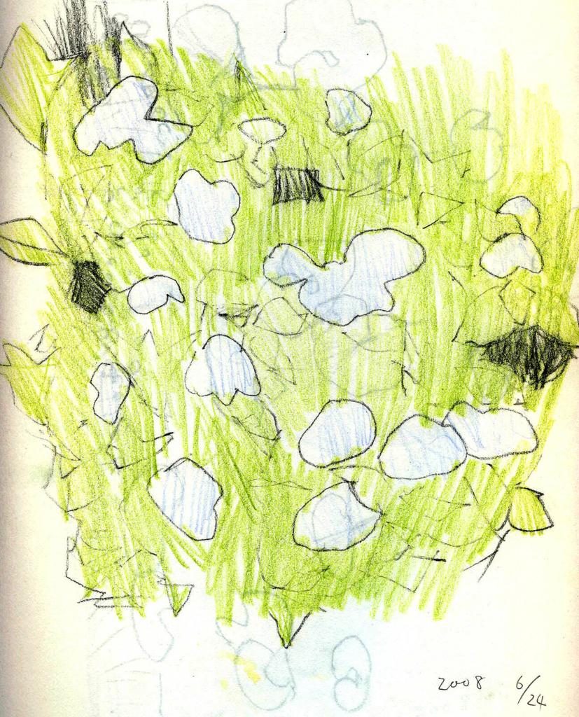 紫陽花の絵