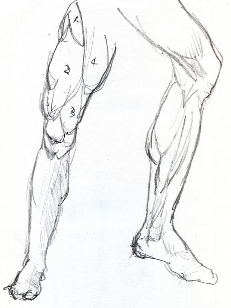 レオナルドダヴィンチの足の素描の模写