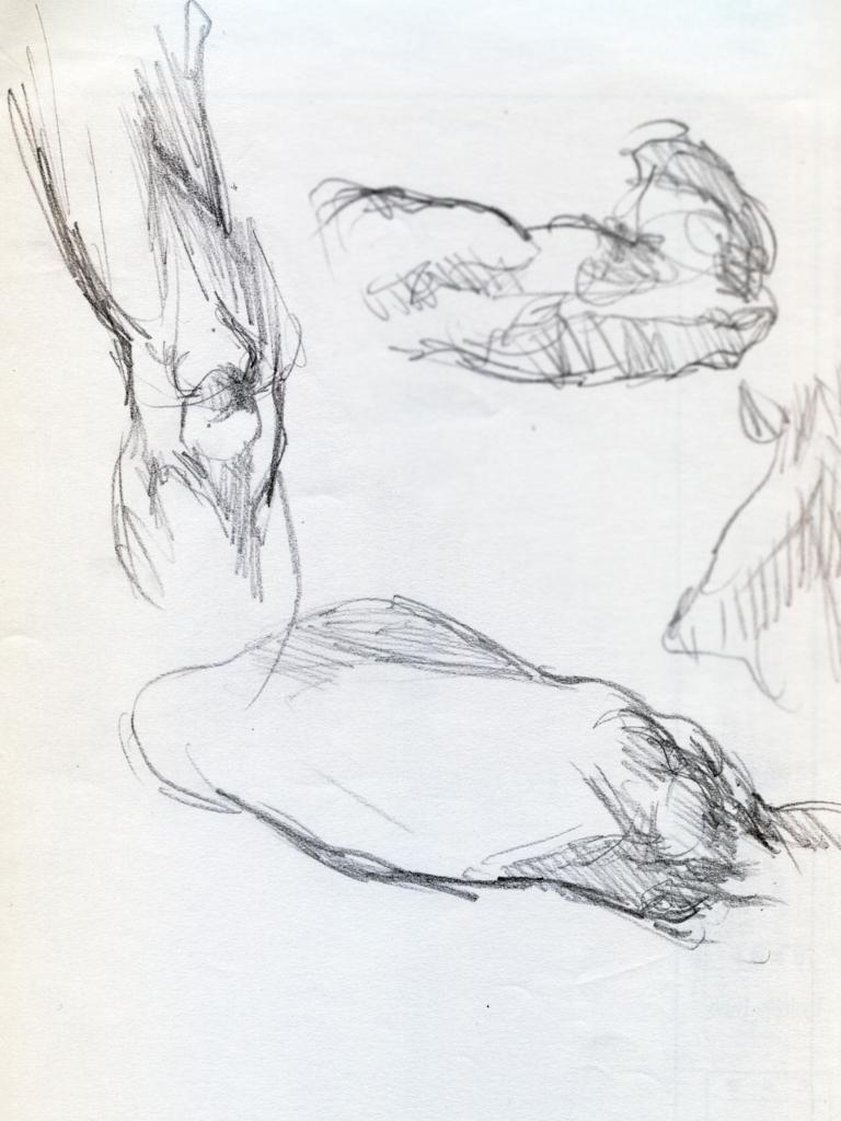 足の素描画