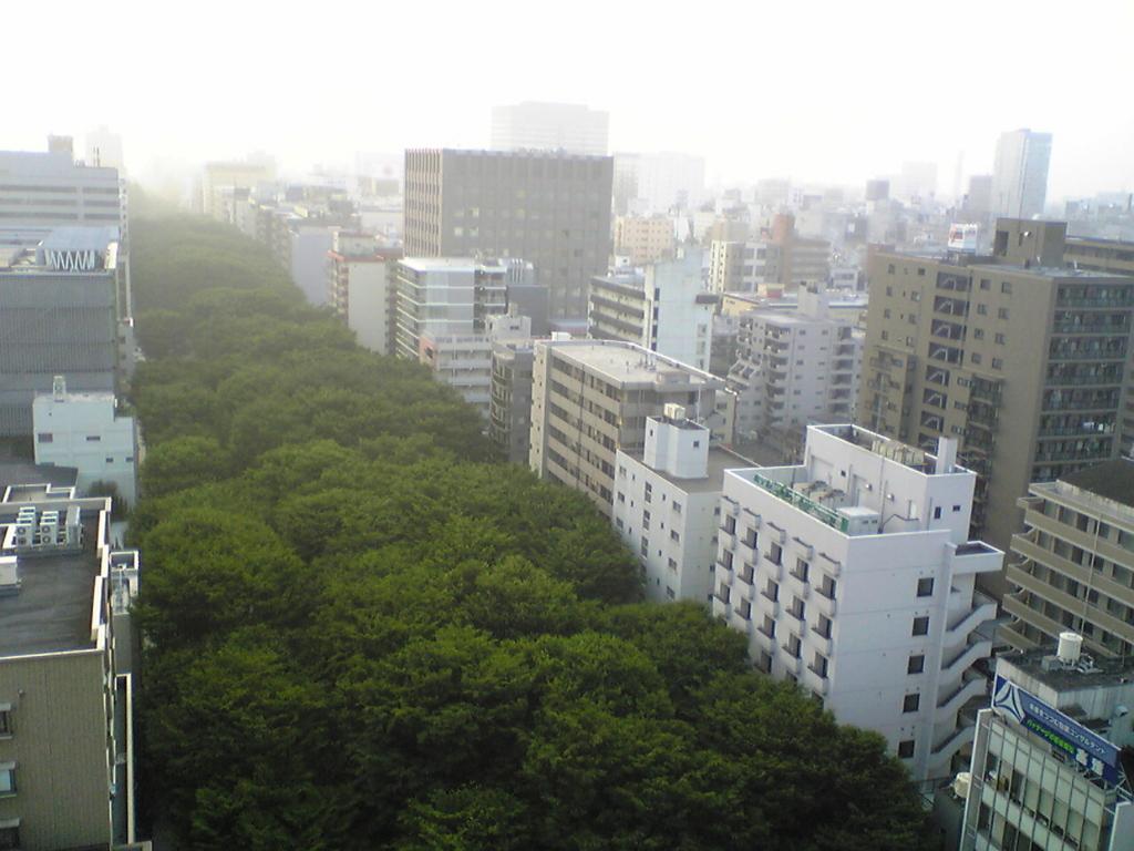 上から見る定禅寺通りの写真