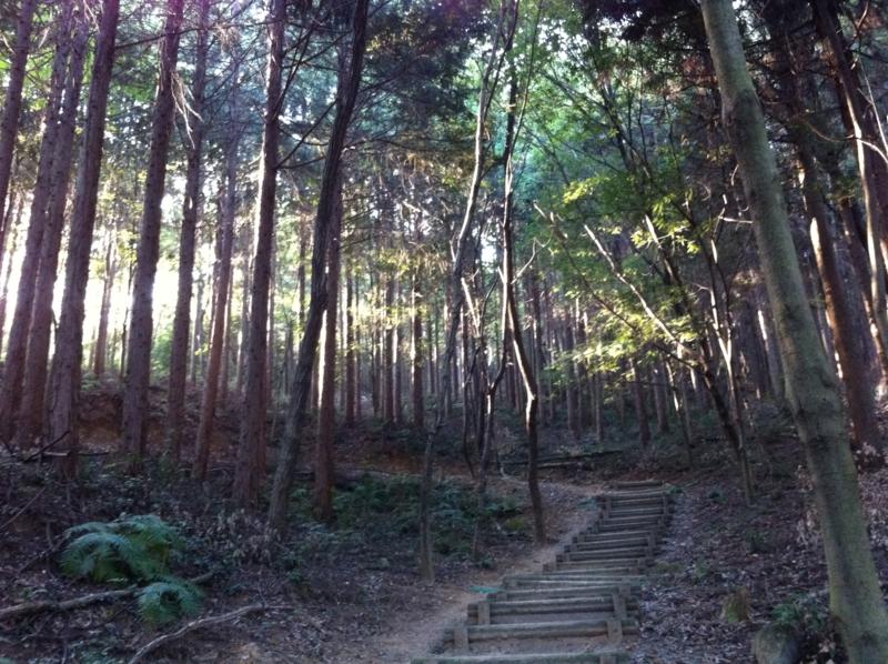 f:id:shunsuke0413:20101017155611j:image