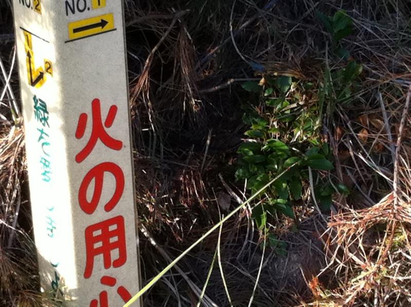 f:id:shunsuke0413:20101017162037j:image