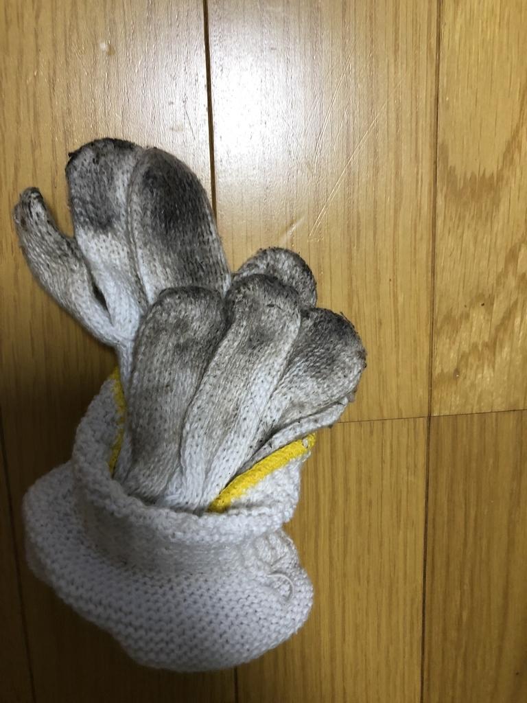 f:id:shunsuke1028agr:20181011174902j:plain