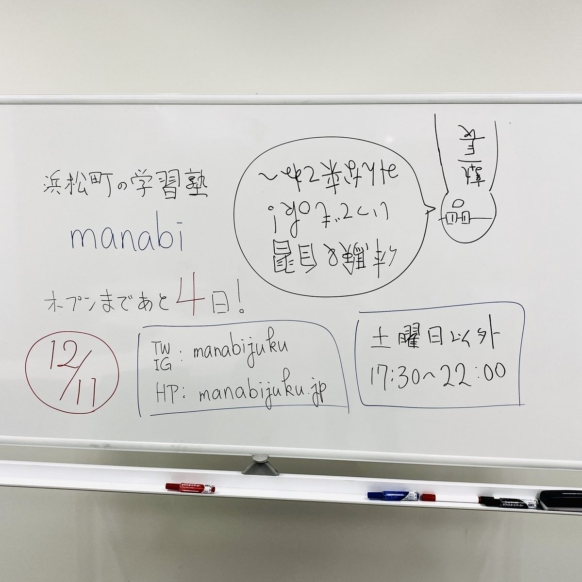 f:id:shunsukehayashi:20191207213047j:plain