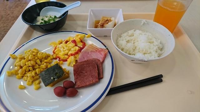 f:id:shuntarokun:20190606154605j:image