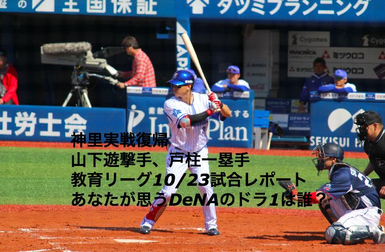 f:id:shuntarororo:20181023182044p:plain