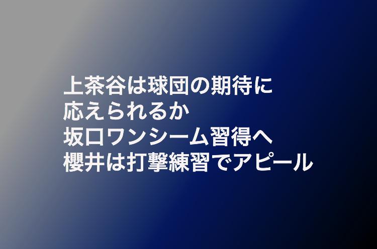 f:id:shuntarororo:20181105194523p:plain